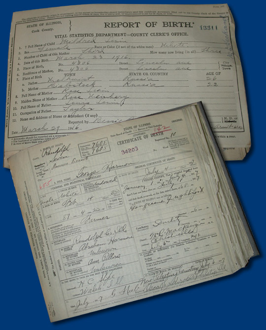 Divorce Records Search For: A History Of Public Health In Illinois